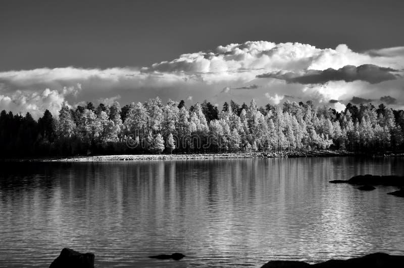 Lasowy jezioro w monochromatycznym infrared fotografia stock