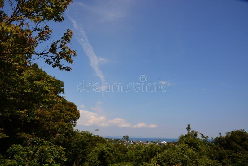 Lasowy kąpanie, świeży zieleń park/ fotografia stock