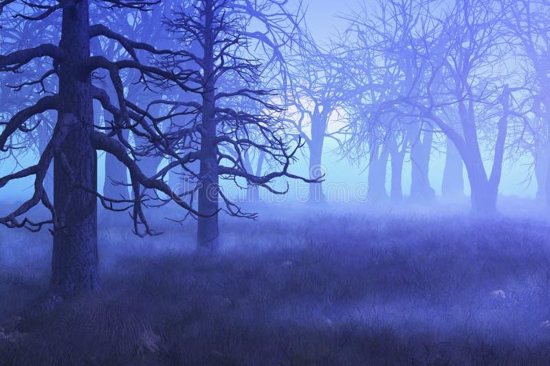 lasowy mglisty ranek ilustracja wektor