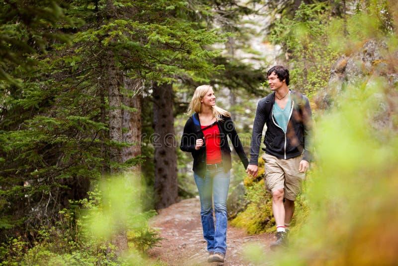 lasowy para spacer zdjęcia royalty free