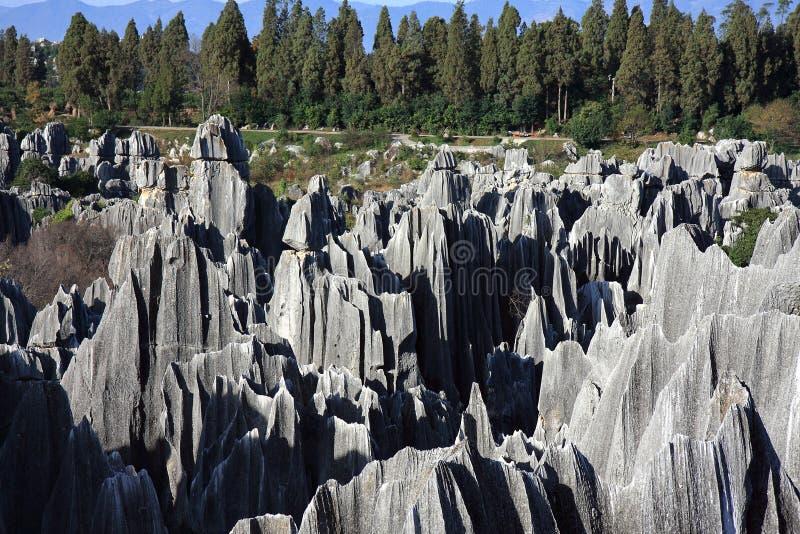 lasowy park narodowy shilin kamień obrazy stock