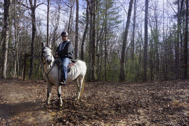 Lasowy podróżnik zdjęcie royalty free