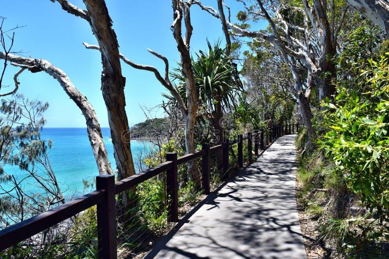 Lasowy sposobu ślad z zadziwiającą ocean scenerią przy Noosa parkiem narodowym obrazy royalty free