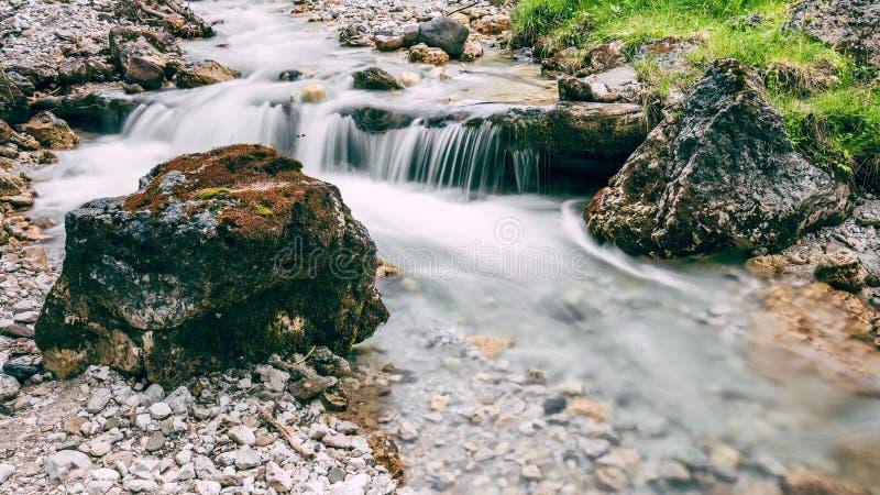 Lasowy strumień biega nad mechatymi skałami w Alps obraz stock