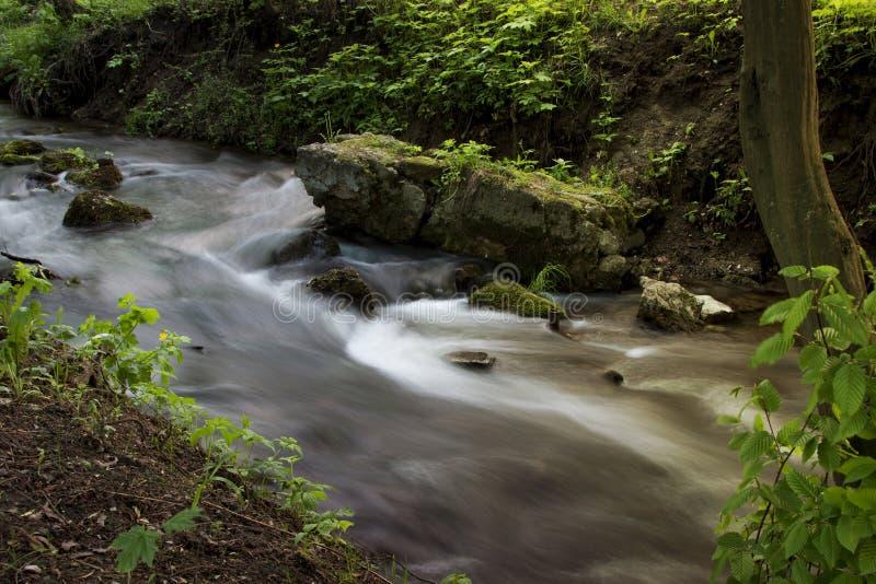 Lasowy strumień biega nad mechatymi skałami w ranku Długi exp zdjęcie stock