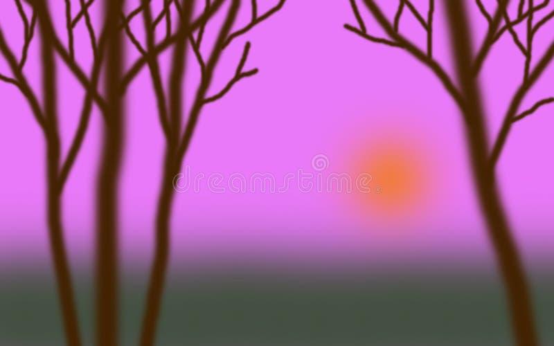 Lasowy zmierzch 01 obraz stock