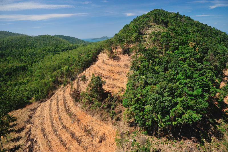lasowy zniszczenie w Thailand formy widok z lotu ptaka obraz royalty free