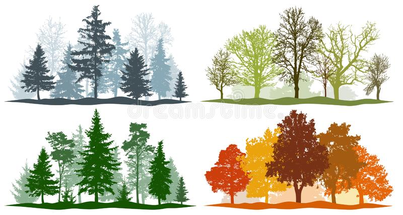 Lasowych drzew zimy wiosny lata jesień 4 sezonów wektoru ilustracja ilustracji
