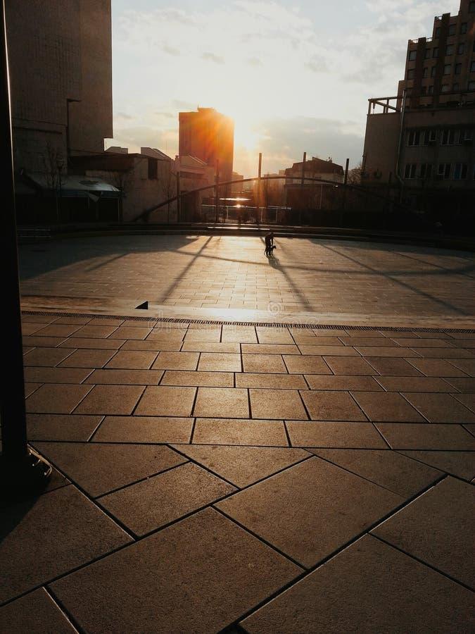 Lassen Sie die Sonne glänzen stockbilder