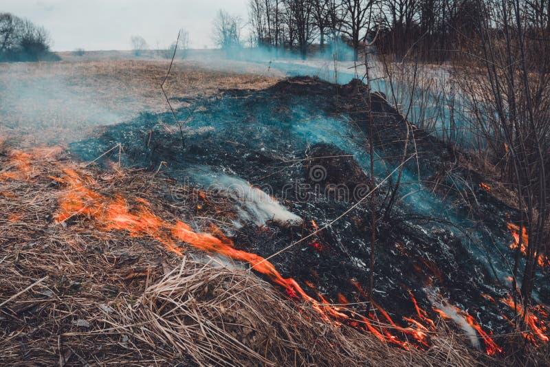 Lassen Sie uns sagen trockenes, Gras, es zu brennen aufzuh?ren ist gef?hrlich stockfotografie