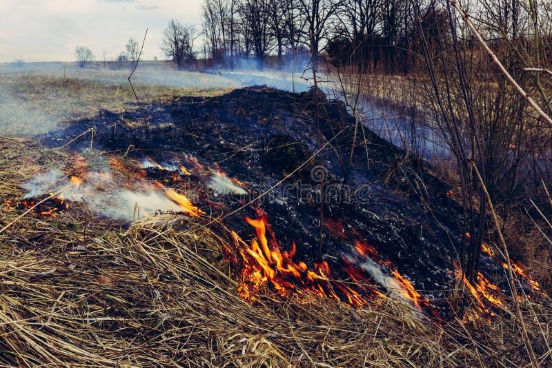 Lassen Sie uns sagen trockenes, Gras, es zu brennen aufzuh?ren ist gef?hrlich lizenzfreie stockfotos