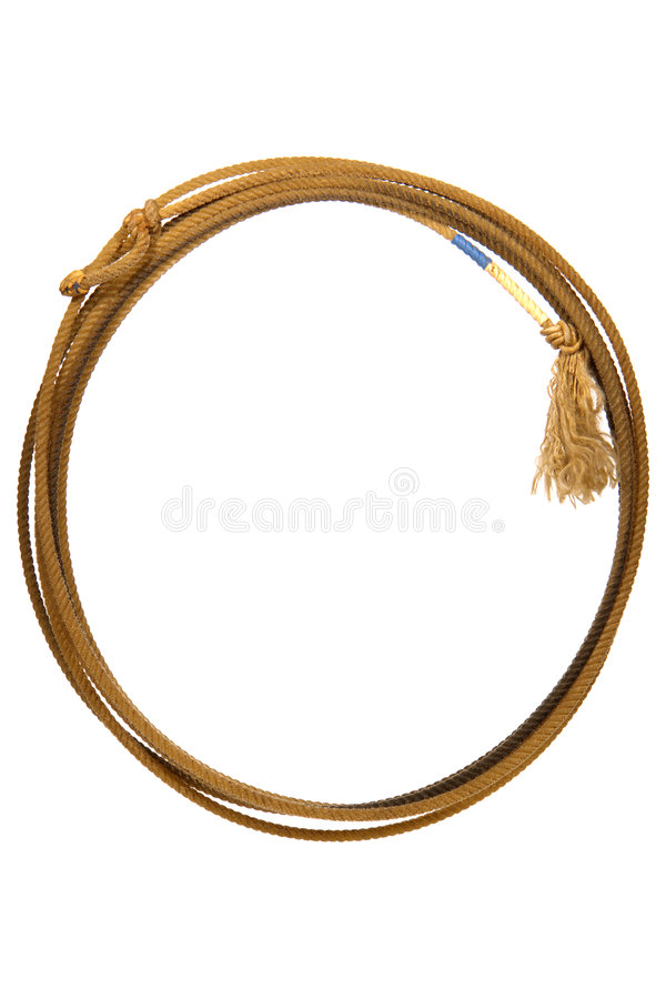 Lasso do rodeio fotos de stock