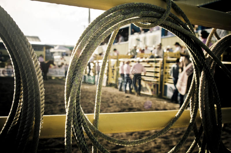 Lasso rope rodeo royalty free stock photography