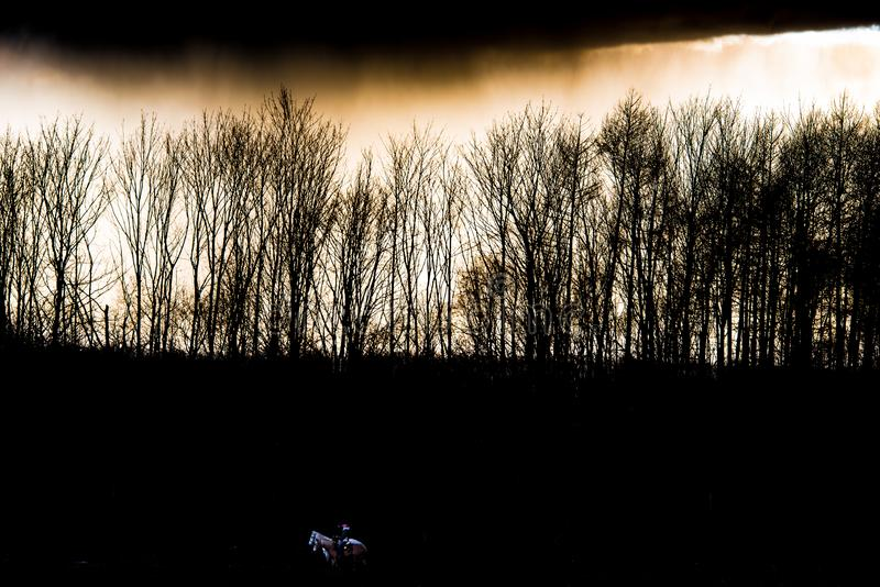 Last daylight and dark sky over forest border with equestrians on dark field royalty free stock photos