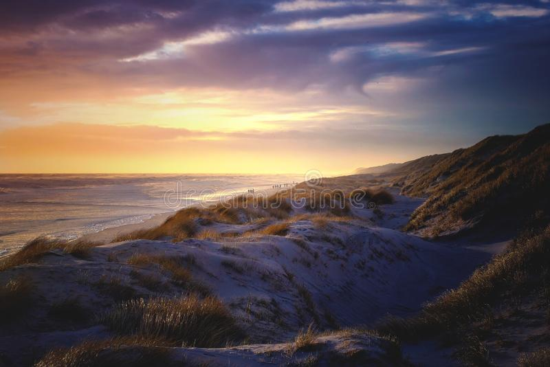 The last evening light at the northern sea. The last warm light touches the soft hills of the dunes at the danish north sea coast royalty free stock photography