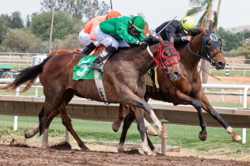 Last Horse Races In Arizona Until Fall. Turf Paradise celebrated its 61st year of operation. Last day of horse racing until fall at Turf Paradise horse racing stock photo