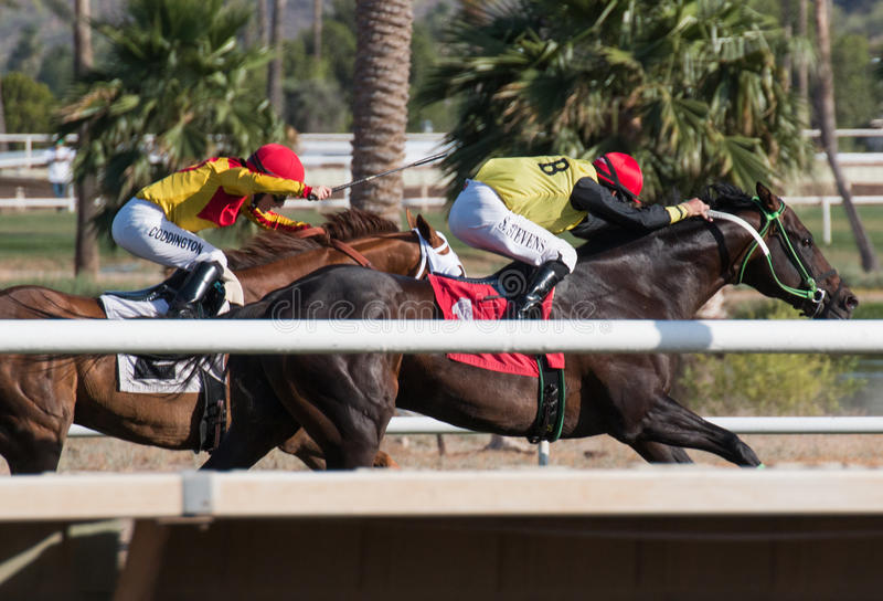 Last Horse Races In Arizona Until Fall. Turf Paradise celebrated its 61st year of operation. Last day of horse racing until fall at Turf Paradise horse racing royalty free stock image