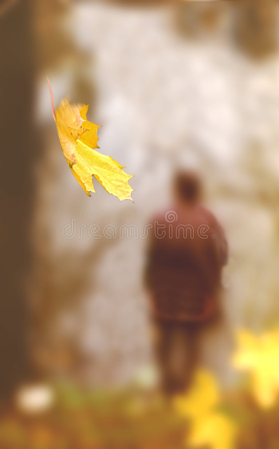 Free Last Leaves Royalty Free Stock Photos - 863248