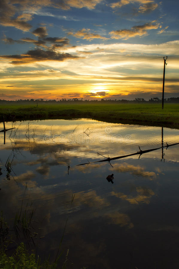 The last light of a small town. The scene is fresh from the paddy fields of Assam, from a small town called Digboi in the far northeastern part of India. The stock images