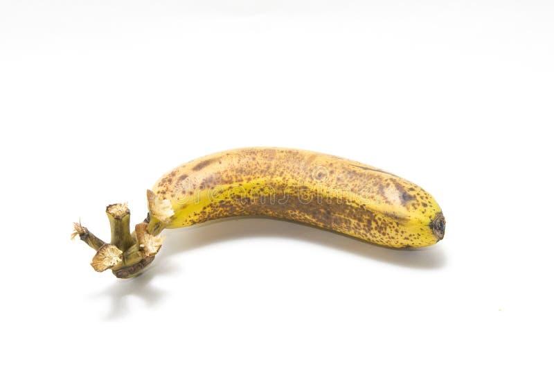 The Last One Banana Stock Photo