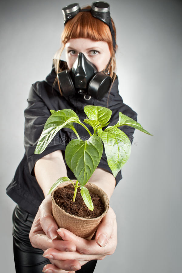 Last Plant On The Earth Stock Image
