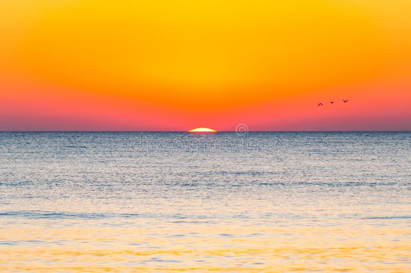 The last seconds of the amazing sundown. Three birds flying above the horizon, a bit of the sun star sphere is showing up above royalty free stock photos