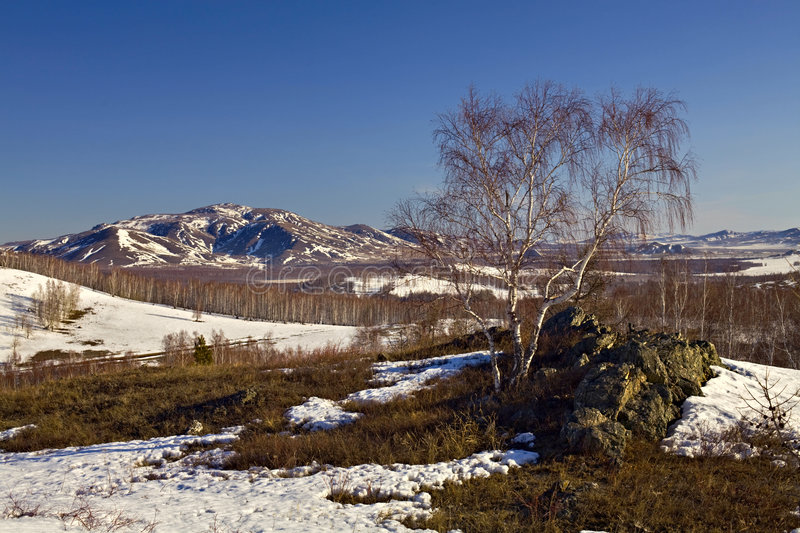 Download Last Snow At South Ural Mountains Stock Photo - Image of season, birch: 4873180