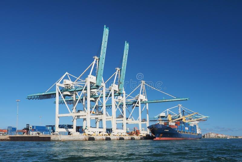 Lastfartyg i porten av Miami, Florida royaltyfri bild