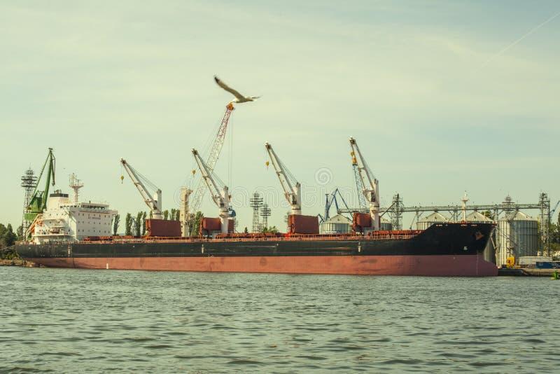 Lastfartygpäfyllning i porten royaltyfri foto