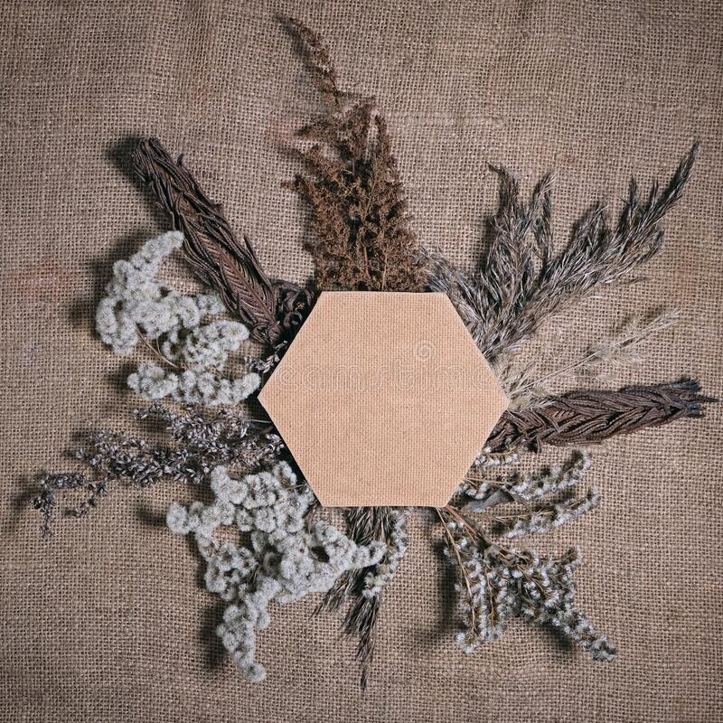 Lasting faded sustainable flowers with hexagonal frame on brown canvas background. Composition of dried flowers for Valentine`s royalty free stock photos