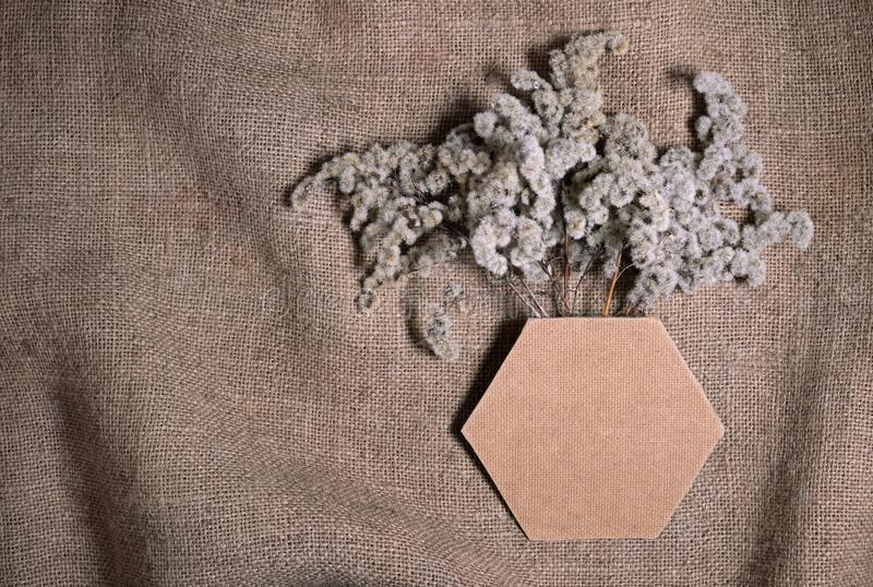 Lasting faded sustainable flowers with hexagonal frame or vase on natural canvas burlap background. Composition of dried flowers stock image