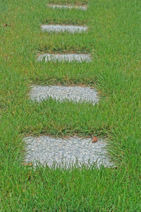 Lastricatori concreti in erba alta fotografia stock