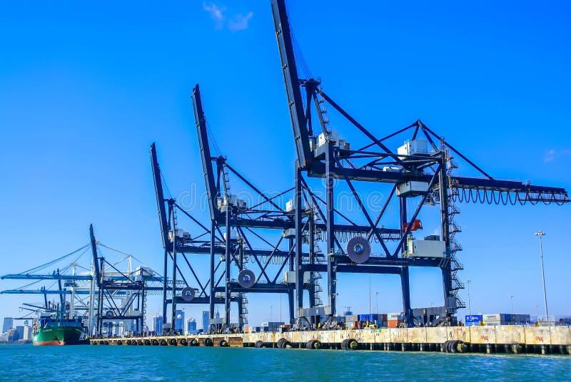 Lastterminal av den Miami hamnstaden, Florida arkivbilder