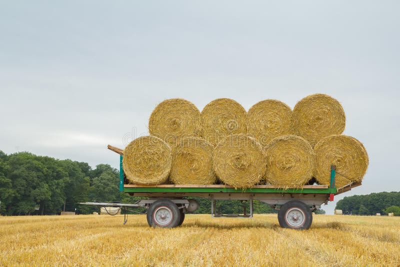 Lastwagen mit Stroh stockfotografie