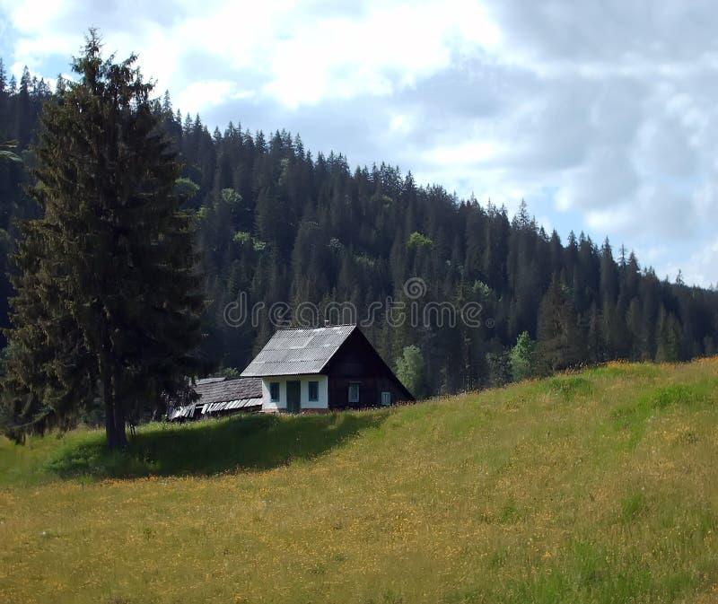 lasu antyczny dom zdjęcie royalty free