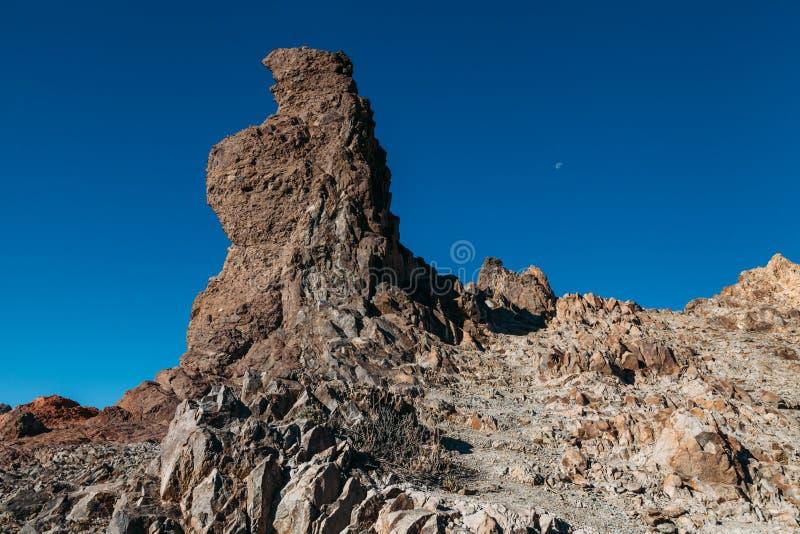 Lasu Canadas kaldera w Teide parku narodowym obrazy stock