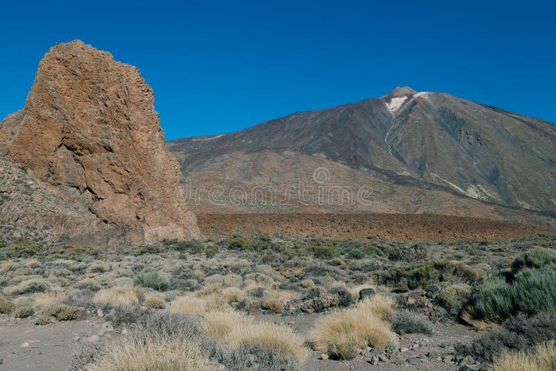 Lasu Canadas kaldera w Teide parku narodowym zdjęcie royalty free