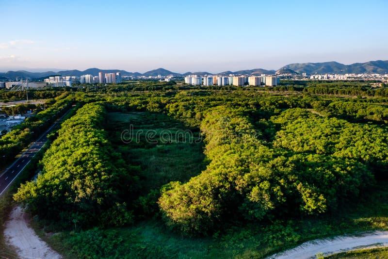 Lasu krajobraz z mieszkaniami własnościowymi w tle blisko Vila Panam, zdjęcia royalty free