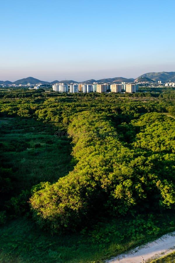 Lasu krajobraz z mieszkaniami własnościowymi w tle blisko Vila Panam, obrazy stock