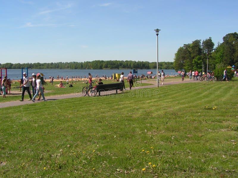 Lasu park ?DROZD ?w Minsk Bia?oru? zdjęcia royalty free