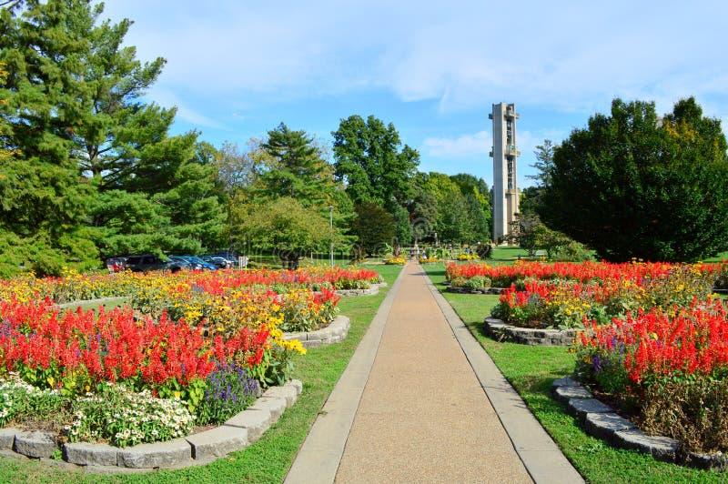 Lasu park w Springfield zdjęcia royalty free