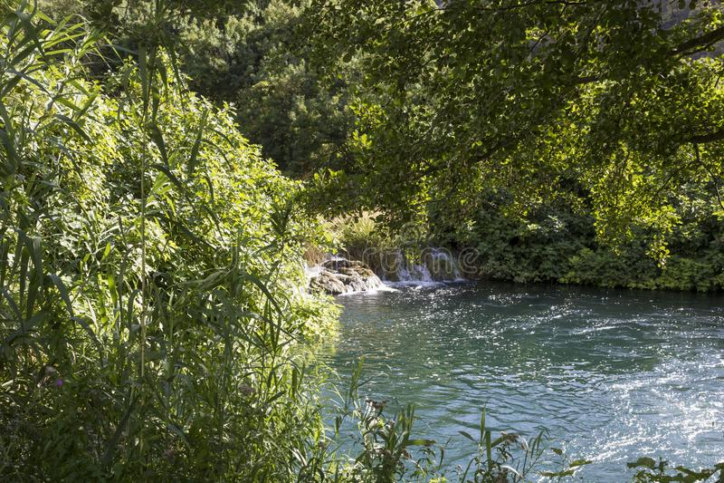 Lasy i wodna rezerwa Krka park narodowy w Sibenik obraz royalty free