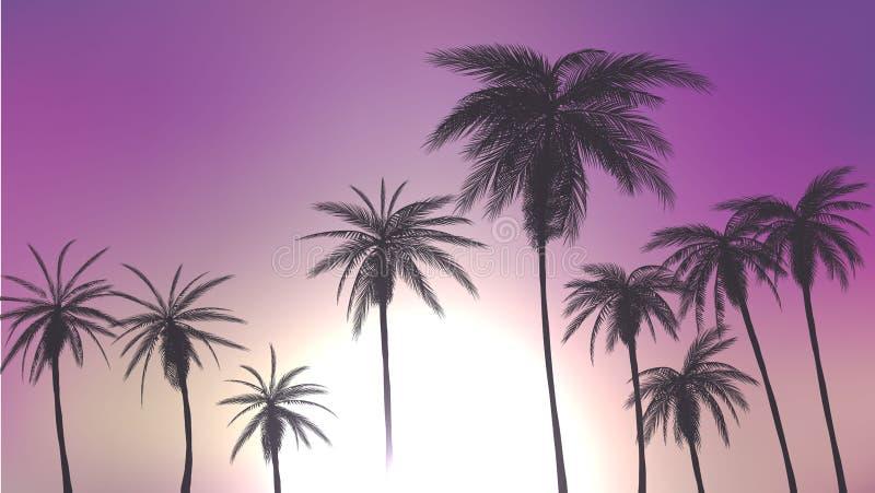 Lat drzewka palmowe w zmierzch scenie również zwrócić corel ilustracji wektora 10 eps ilustracji