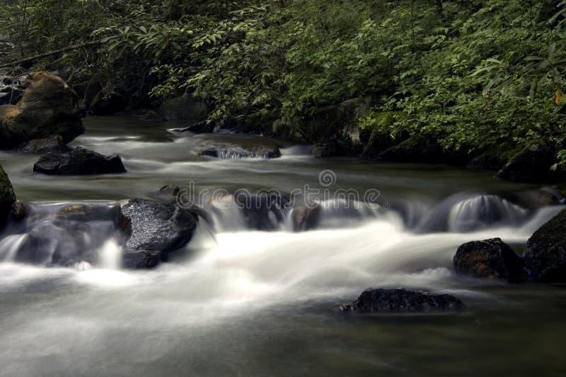 lat flod royaltyfri fotografi