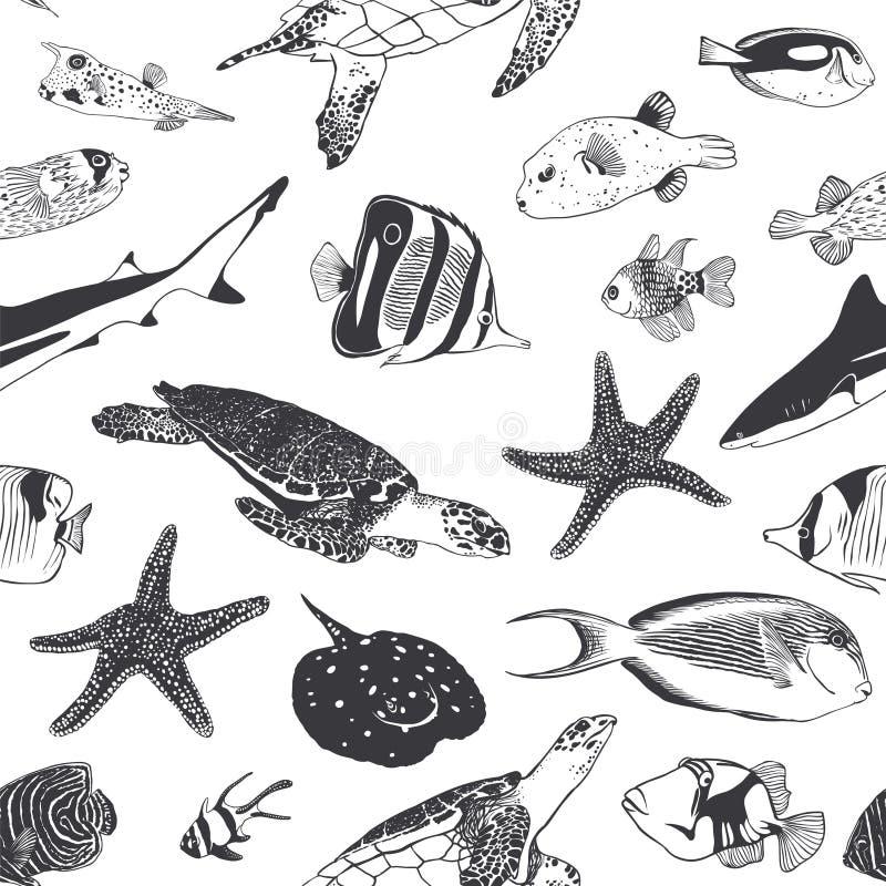 lata bezszwowy wzoru Morza i oceanu mieszkanowie Ryba, żółw ilustracji