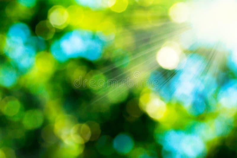 Lata bokeh abstrakcjonistyczny tło w zielonym kolorze żółtym barwi z słońce promieniami Zamazany tło zieleń liście na naturze fotografia royalty free