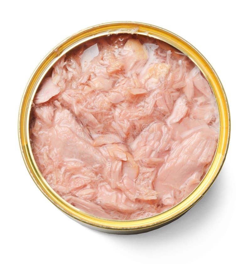 Lata de lata aberta com o atum isolado no branco Close-up imagem de stock