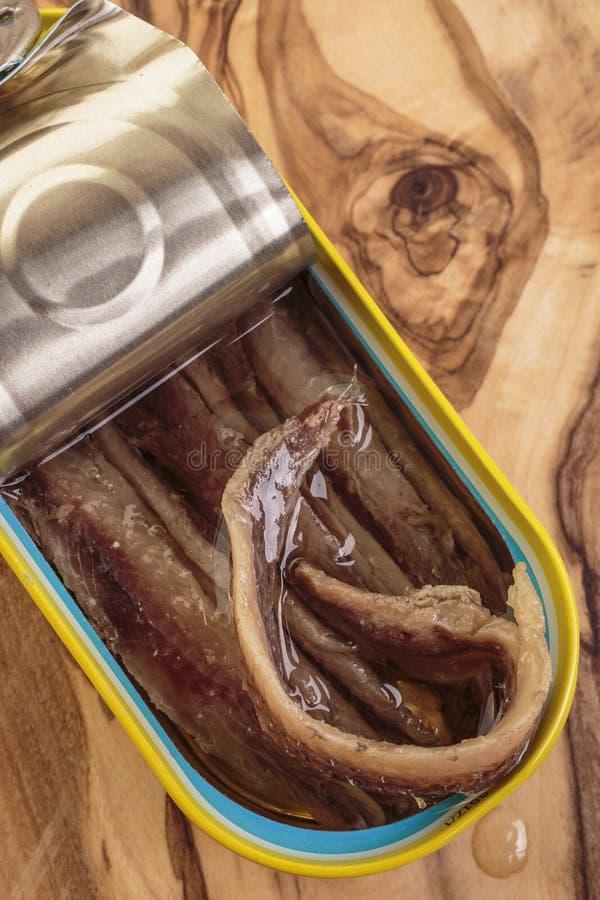Lata de lata de faixas da anchova fotos de stock royalty free
