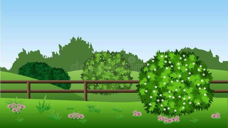 Lata krajobrazowy tło z zielonymi krzakami w okwitnięciu, wzgórza, ilustracji