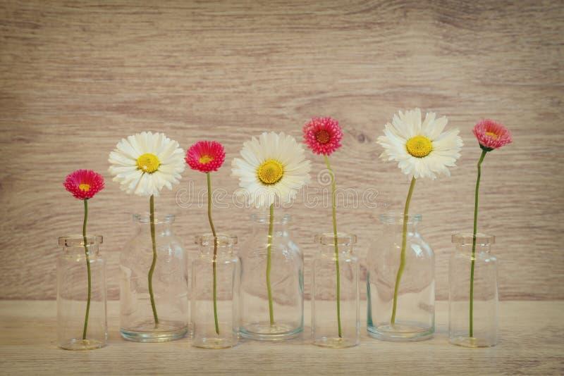 Lata kreatywnie życie w minimalnym stylu wciąż Biały i różowy Marg zdjęcia stock